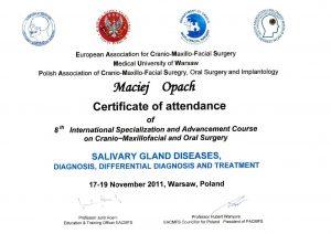 LEK-DENT-MACIEJ-OPACH-Salivary-gland-diseases